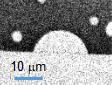 62 マイクロバブル・ナノバブルのSEM中その場生成 ~電子顕微鏡で水中に微細な泡を作り、そして見る~